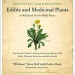 Book Cover for Identifying and Harvesting edible and Medicinal Plants