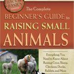 Beginner's Guide To Raising Small Animals
